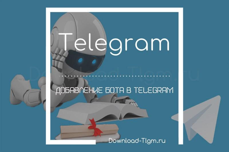 Добавление бота в telegram