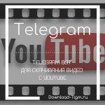Telegram bot для скачивания видео с youtube