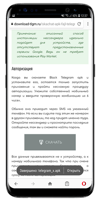 скачивание файла с download-tlgm.ru