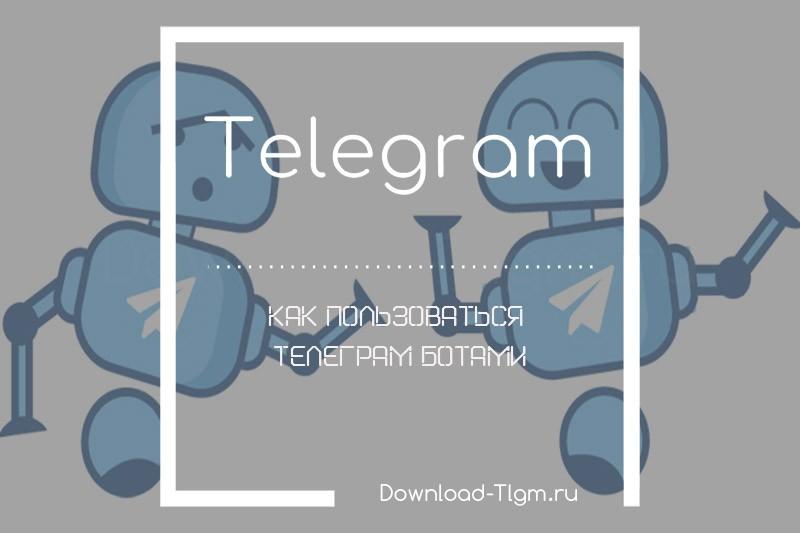 Как пользоваться телеграм ботами