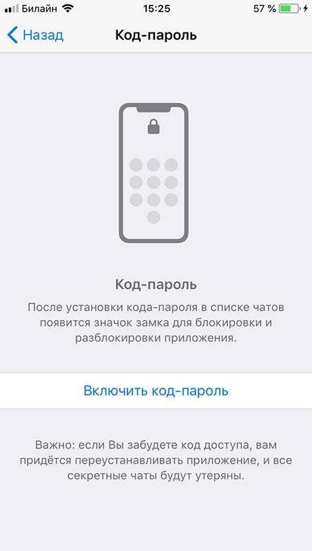 вводим код-пароль