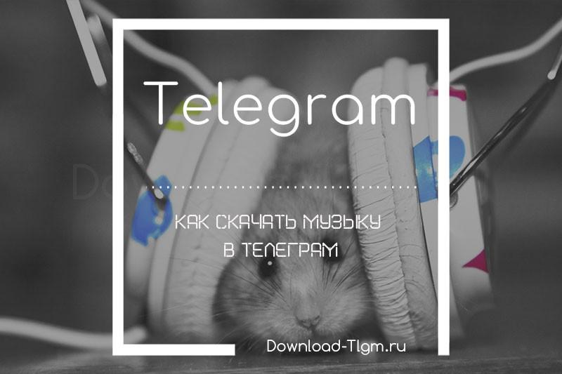 Как скачать музыку в Телеграм