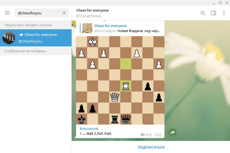 @chessforyou
